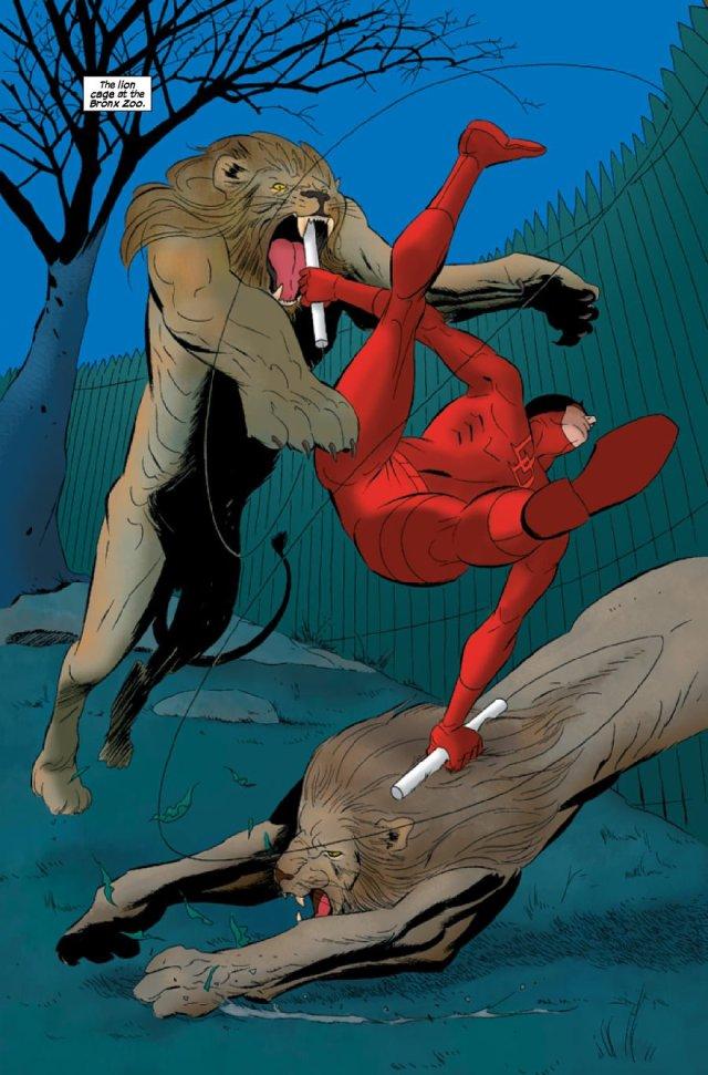 Dardevil battling lions